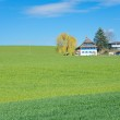 The Swiss Countryside — Stock Photo #72442281