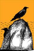 Crow on stone — Stock Vector