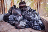 Garbage bag, in a gather room — Stock Photo