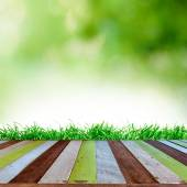 Fresh spring green grass with blue bokeh and sunlight and wood floor. Natural background — Stock Photo