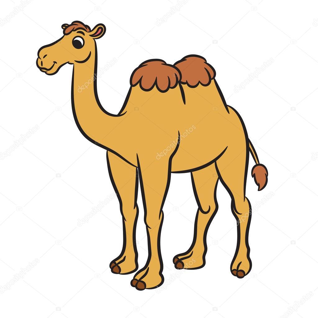 ラクダの画像 p1_24