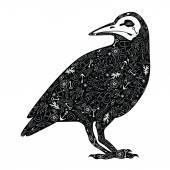 Black crow — Stock Vector
