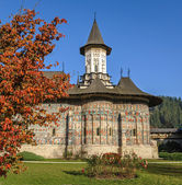Church in a nunnery Sucevita decorated with frescoes, Romania — Stock Photo