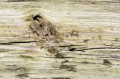 Wood texture with natural pattern — Stock Photo