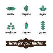 Herbs icon for cook — Stock Vector