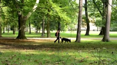 Woman with dog in park - trees — Stok video