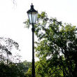 Park - green nature (trees and grass) - street lamps - pavement - sunny - nobody — Stock Video #55314077