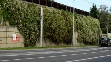 Noisy urban street with passing cars and trams - noise barrier with nature — Stok video