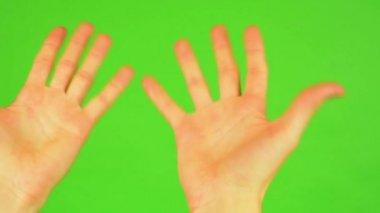 Man hands - green screen — Wideo stockowe
