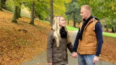 Young model couple in love - autumn park(nature) - couple holding hands - happy couple smiles — Stockvideo