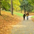 Young model couple in love - autumn park(nature) - couple (man and woman) walking in park - couple holding hands - couple talking - happy couple — Stock Video #56830433