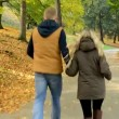 Young model couple in love - autumn park(nature) - couple (man and woman) running in park - couple holding hands - happy couple — Stock Video #56833957