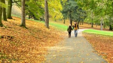 Young model couple in love - autumn park(nature) - couple (man and woman) walking in park - couple holding hands - couple talking - happy couple — Stock video