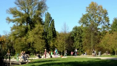 Autumn park (trees) - people walking - grass - family and friends — Stok video