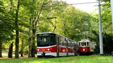 Vintage tram in station - park (trees - forest) — Stok video