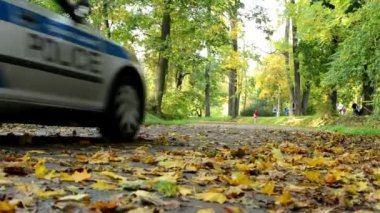 Police car - Fallen leaves on road - Autumn park (forest - trees) - people in background — Stock Video
