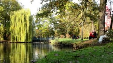 Autumn park (trees) - people relax - lake with ducks - family and friends on bench - bridge — Stockvideo