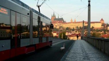 City - urban street (bridge) - Prague castle - cars and trams - people walking - morning — Stok video