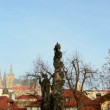 City Prague, Czech Republic - autumn trees - historic urban buildings (red roofs) with statues - blue sky - sunrise — Stock Video #57741547