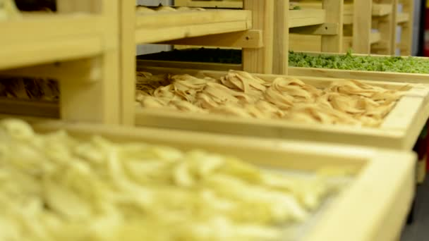 Dried pasta in racks in factory - closeup — Vídeo de stock