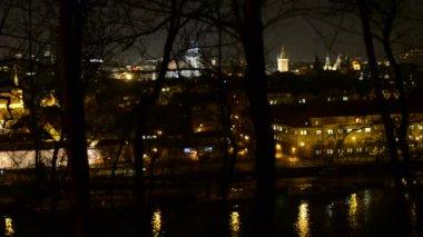 Night panorama city through the trees (park) — Стоковое видео