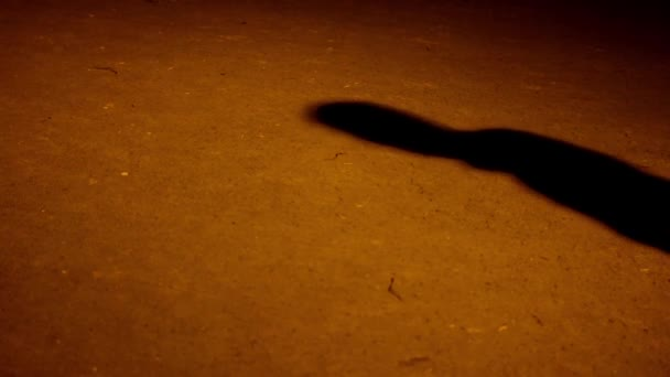 depositphotos_71206213-stock-video-shadow-of-man-on-the.jpg
