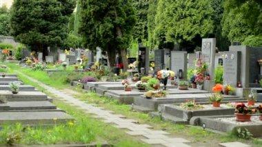 PRAGUE, CZECH REPUBLIC - MAY 2, 2015: Cemetery - gravestones (flowers) — Stok video