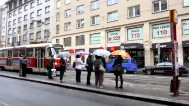 PRAGUE, CZECH REPUBLIC - MAY 30, 2015: tram travel in the city (urban street) and stop in the station — Stock Video