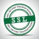 SSL 100 Safety Guarantee seal — Stock Vector #69813365