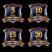 Set of anniversary elements — Stock Vector