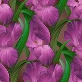 アイリスのシームレスなパターン — ストック写真