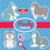 Set of husky breed puppies and dog care accessories stickers — Stock Vector