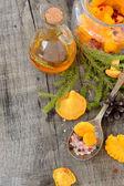Pickled chanterelle mushrooms — Foto de Stock