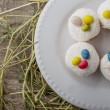 Easter cupcakes — Stock Photo #64301015