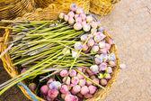 Lotus en el trabajo de cesta — Foto de Stock