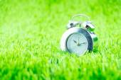 Silver alarm clock on green grass — Stock Photo