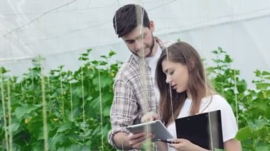 Guy shows a girl on the tablet example of healthy plants — Stock Video