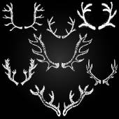 Chalk painted antlers — Stock Vector