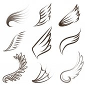Set of painted wings — Stock Vector