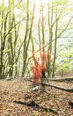 Photographer woods lens flare — Stock Photo