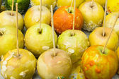 : With sugar-coated apples on a stick — Stock Photo
