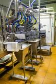 Tillverkning av glass. arbetande transportband — Stockfoto
