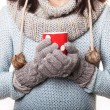 Hands in knitted mittens holding red mug isolated on a white bac — Stock Photo #62904969