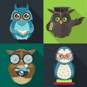 Set owl with book — Vector de stock