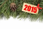 """Branche d'arbre de Noël, bosses et la plaque avec le texte « 2015"""" — Photo"""