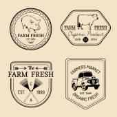 Retro Set Bauernhof frische Logos — Stockvektor