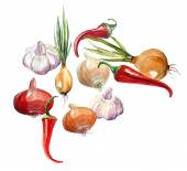 Onion pepper and garlic — Stockfoto