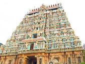 宏伟的古代神殿复杂奇丹巴拉姆泰米尔纳德邦印度 — 图库照片