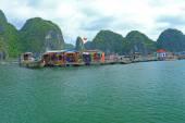 Schwimmende Fischfarmen vietnam — Stockfoto