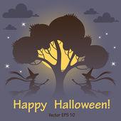Halloween karta s noční oblohu, měsíc a čarodějnice — Stock vektor